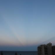 February 12 2012 (17) (Large)