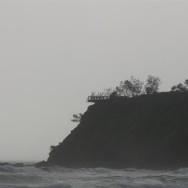 February 14 2011 (Large)